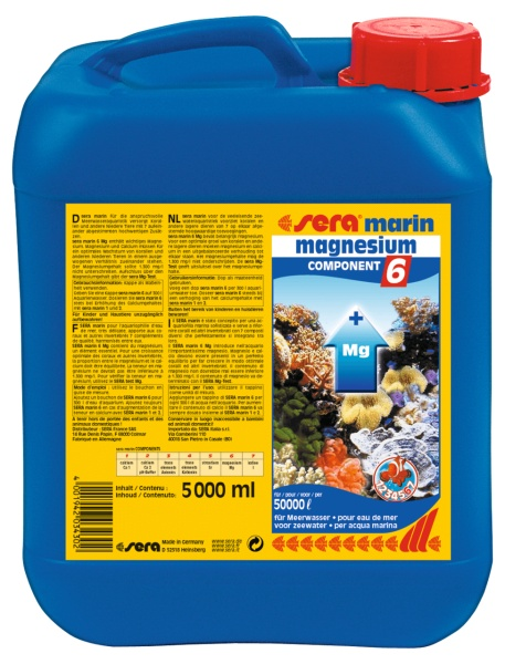 COMPONENT 6 magnesium